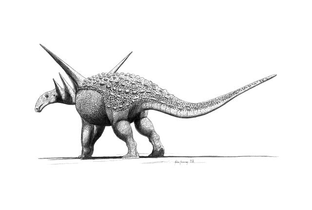ankylosaurus talkankylosaurus wikipedia ankylosaurus