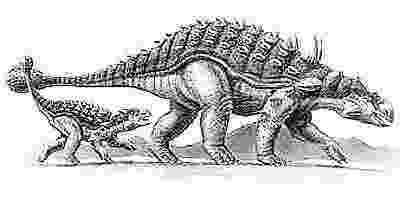 ankylosaurus this week in dinosaur news ankylosaurus tail evolution ankylosaurus