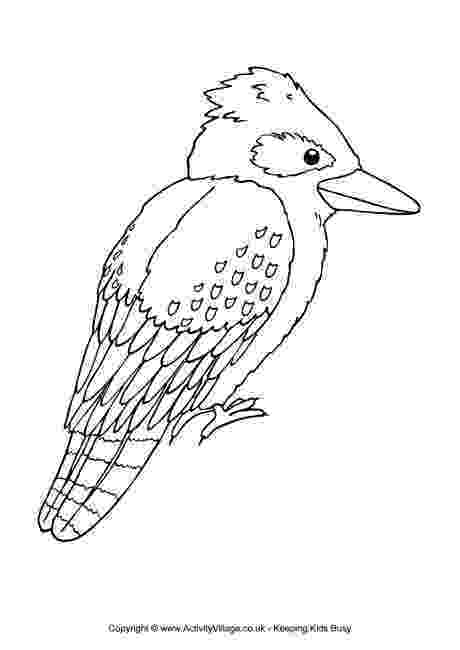 australian animals colour by numbers kookaburra colouring page animals colour australian by numbers