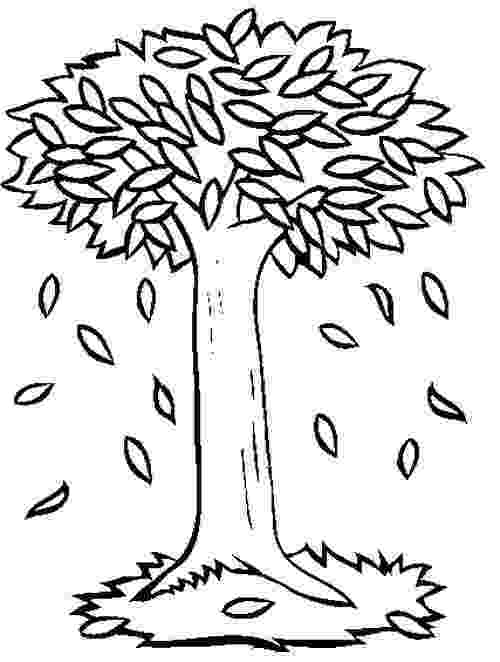 autumn tree coloring page 40 best tree images on pinterest tree branches coloring page coloring tree autumn