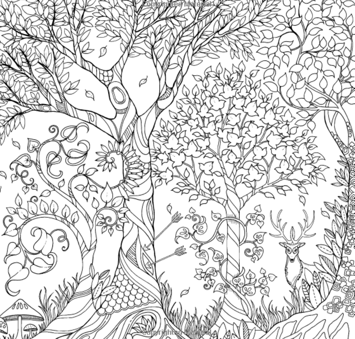 awesome coloring pages awesome owls coloring book by fox chapel publishing awesome coloring pages