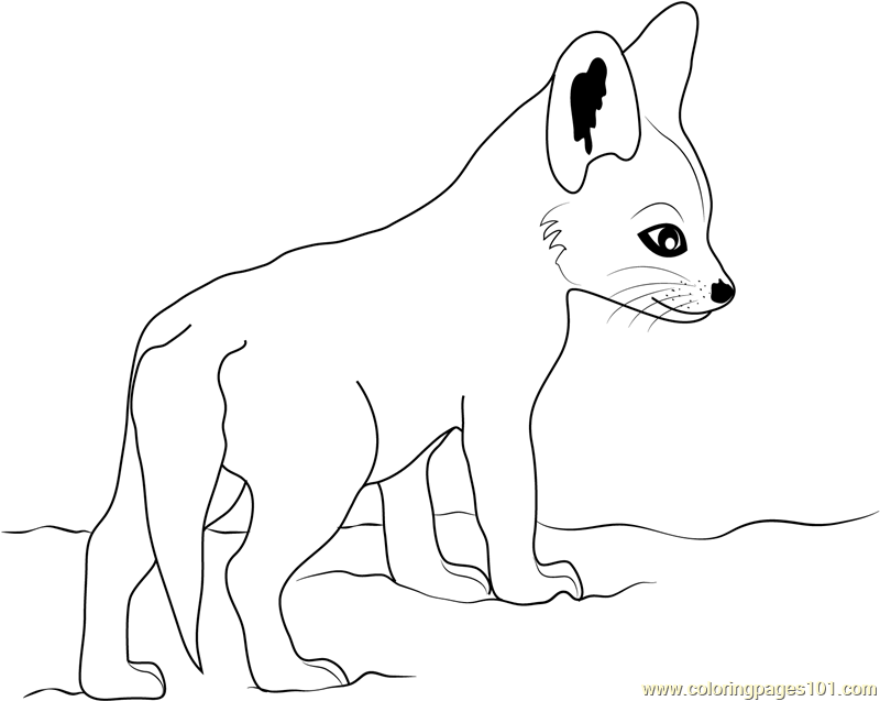 baby fox coloring pages cute baby fox coloring pages coloring home baby pages fox coloring