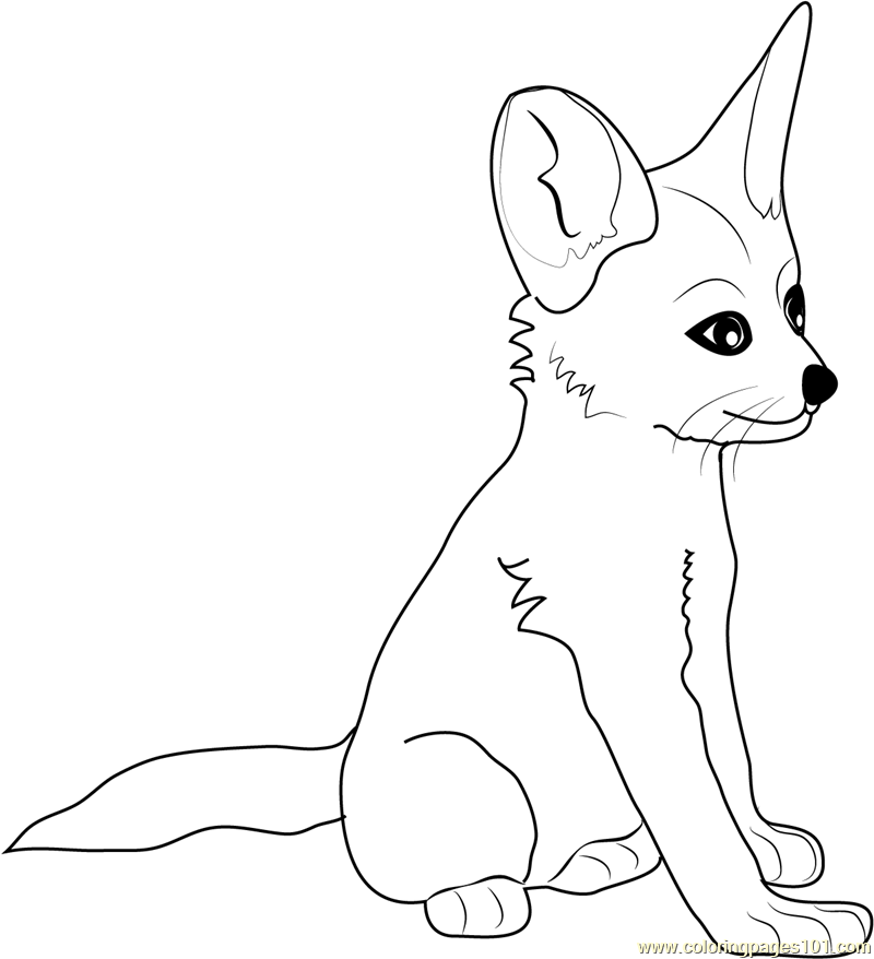 baby fox coloring pages cute baby fox coloring pages coloring home coloring pages baby fox