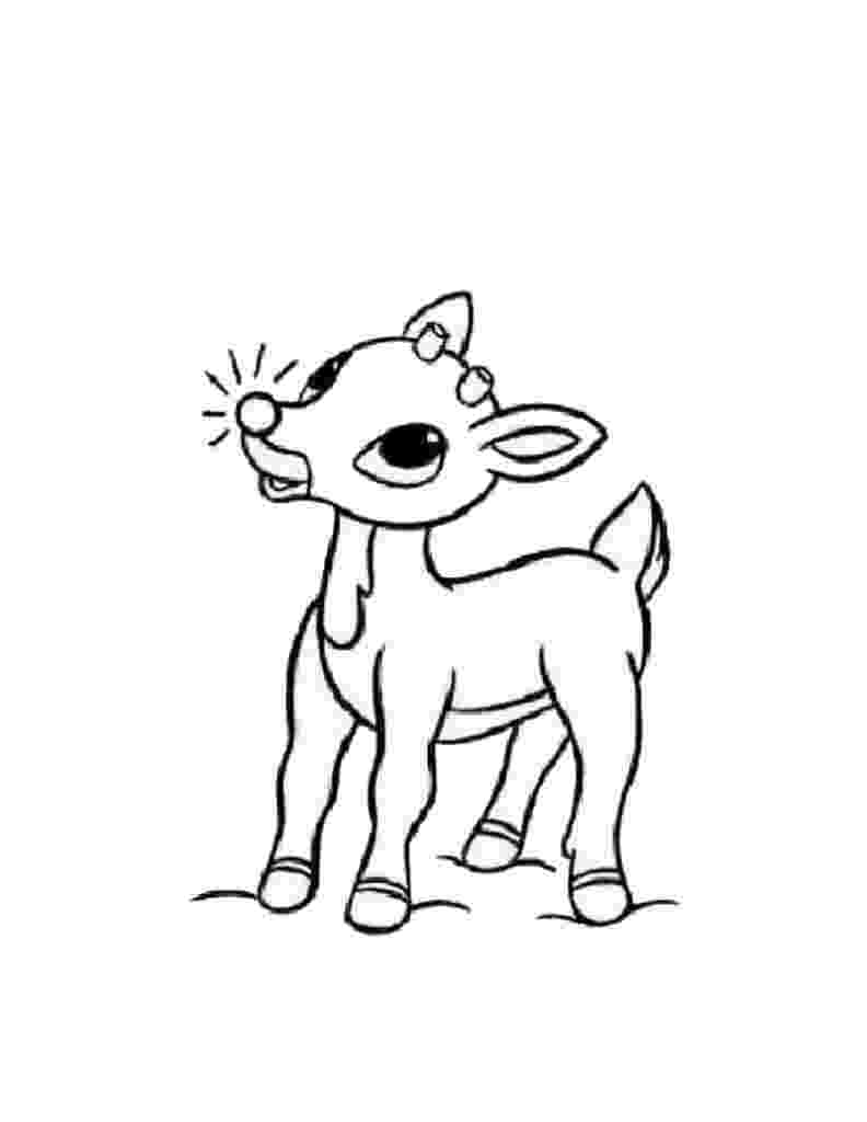 baby reindeer coloring pages free printable reindeer coloring pages for kids pages reindeer baby coloring