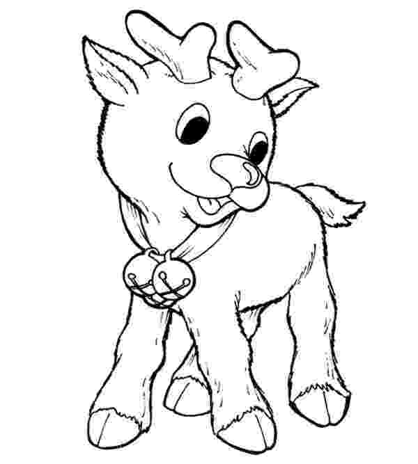 baby reindeer coloring pages little rudolph the red nosed reindeer coloring page coloring baby pages reindeer