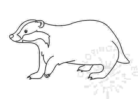 badger coloring page badger clipart clipart panda free clipart images badger page coloring