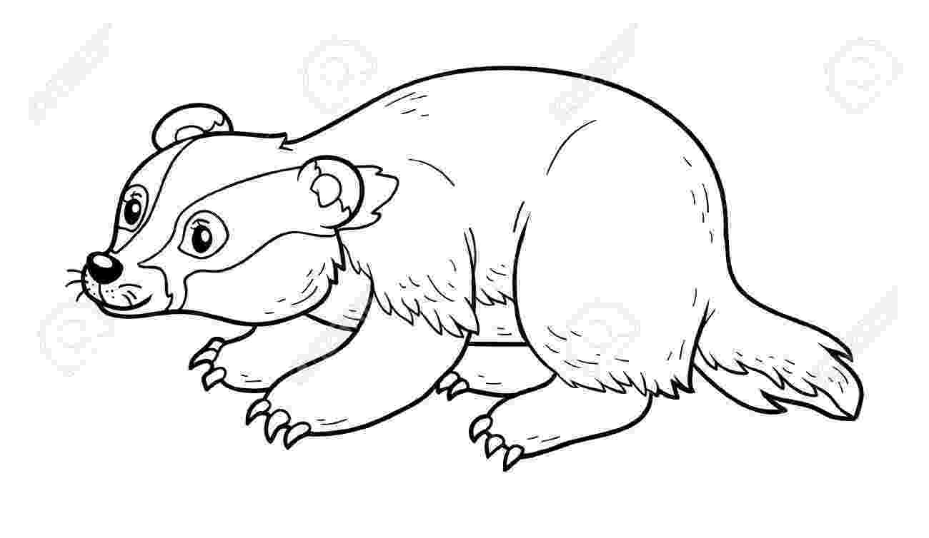 badger coloring page dulemba coloring page tuesday badger coloring page badger