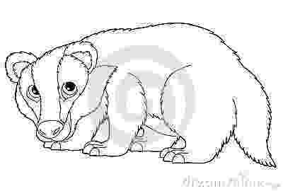 badger colouring badger coloring page animals town animals color sheet badger colouring 1 1