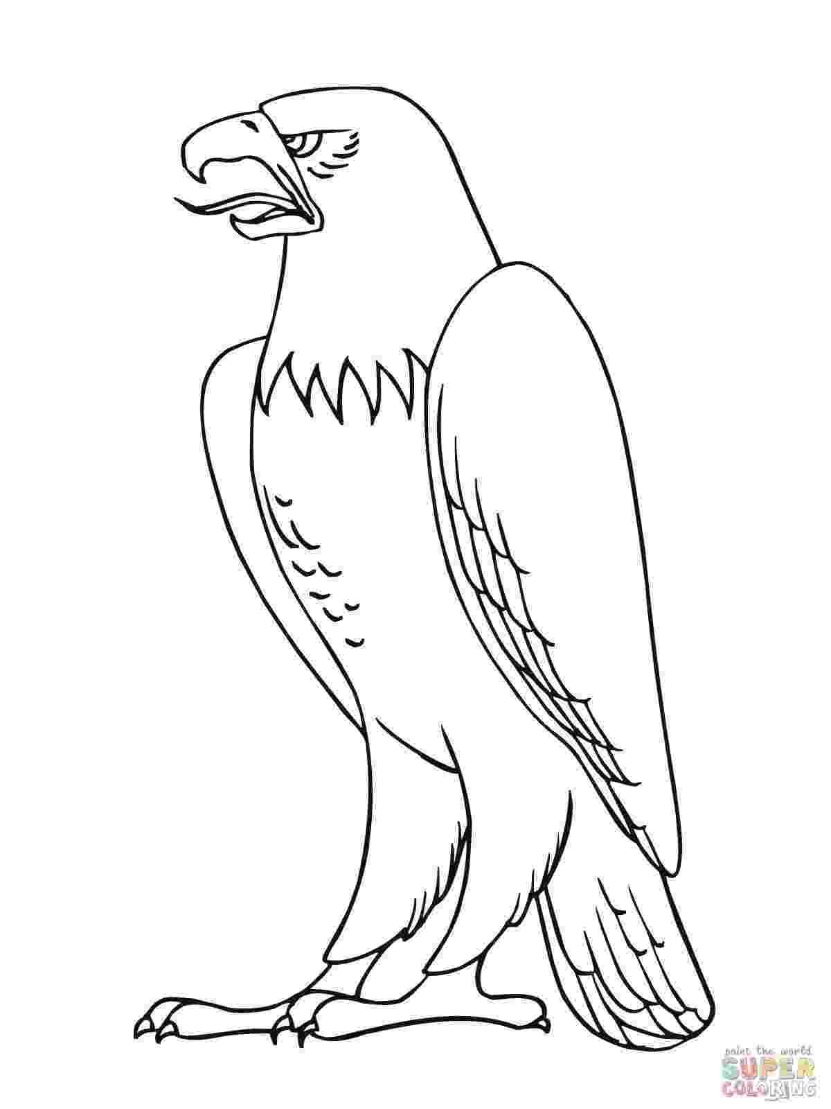 bald eagle coloring free printable bald eagle coloring pages for kids eagle coloring bald 1 1