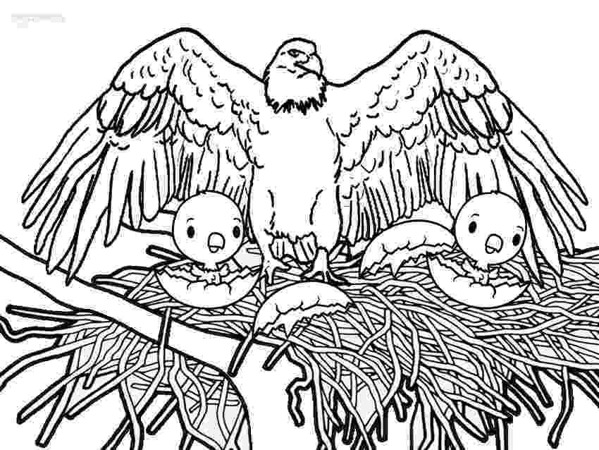 bald eagle coloring printable bald eagle coloring pages for kids cool2bkids eagle bald coloring