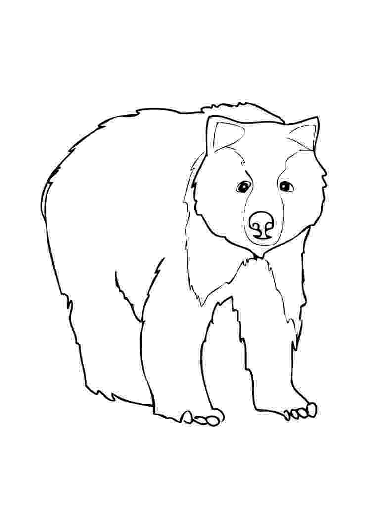 bear pictures to color free printable teddy bear coloring pages for kids color to bear pictures