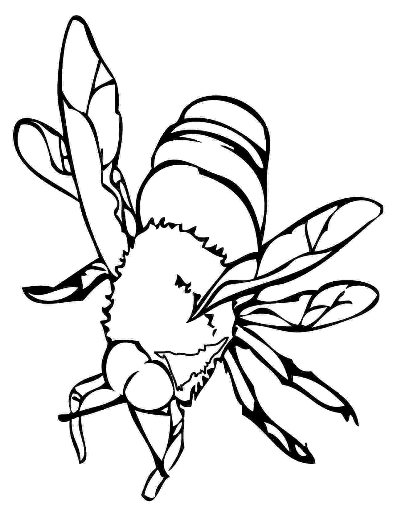 bee coloring sheet bee coloring pages bees on the net coloring sheet bee