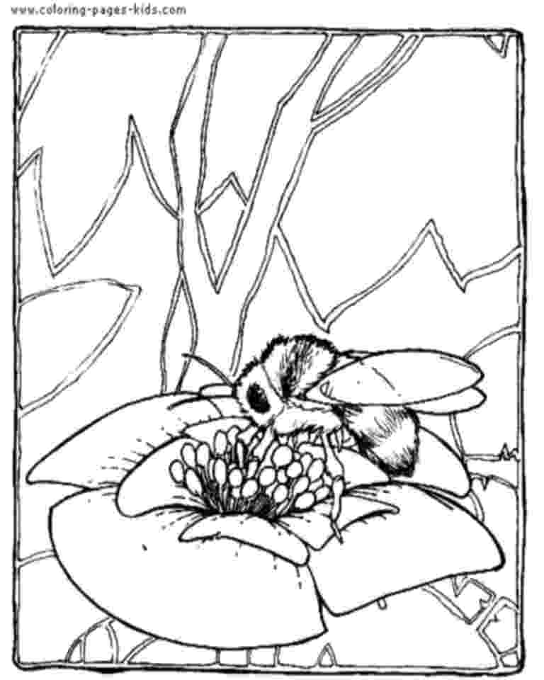bee coloring sheet bee coloring pages educational activity sheets and coloring bee sheet