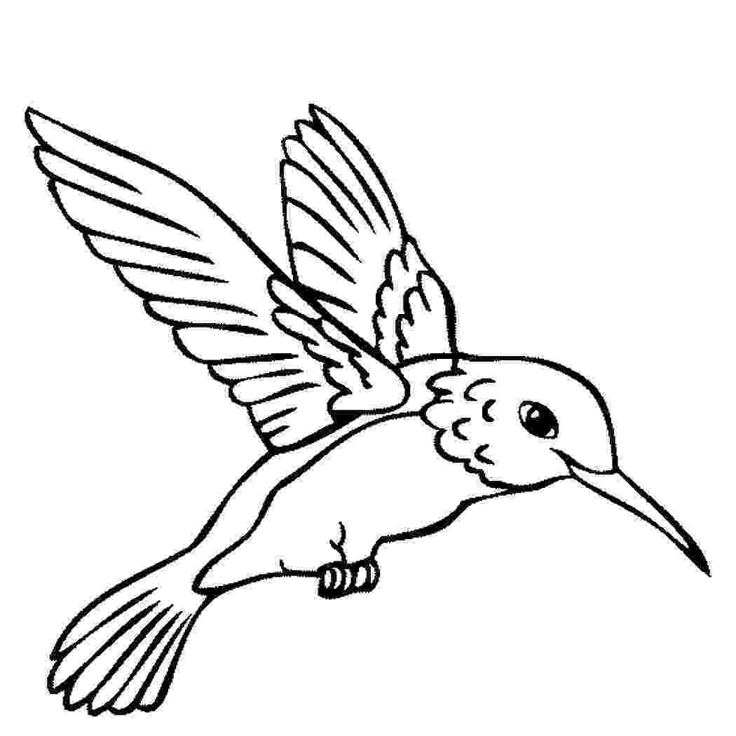 bird colouring pages for kids best realistic bird coloring pages for kids womanmate kids bird colouring pages for