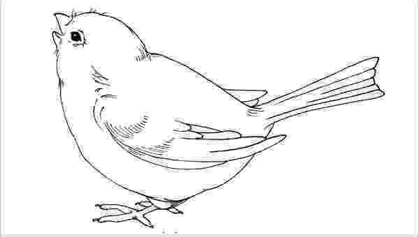 bird printable 9 printable bird templates free sample example format printable bird 1 2