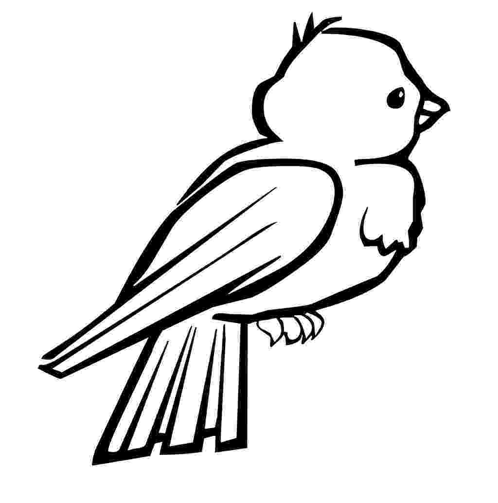 bird printable bird coloring pages to download and print for free printable bird