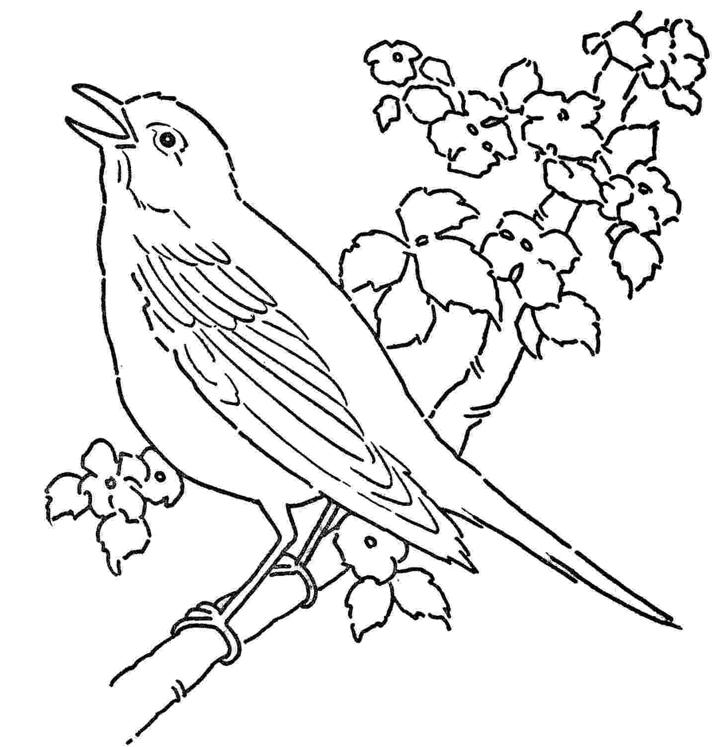 bird printable bird coloring pages to download and print for free printable bird 1 1