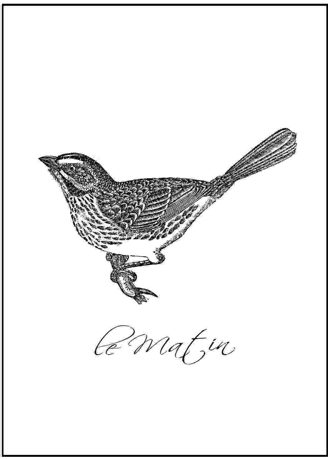 bird printable just sweet and simple free wall art spring birds printable bird