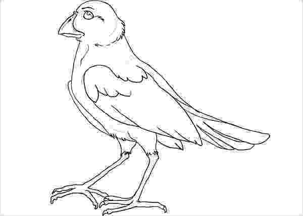 bird printable template christmas dove template christmas bible letter a crafts template bird printable