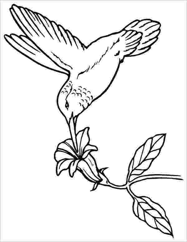 bird printable template red bird coloring activity for older kids amara39s 1st printable template bird