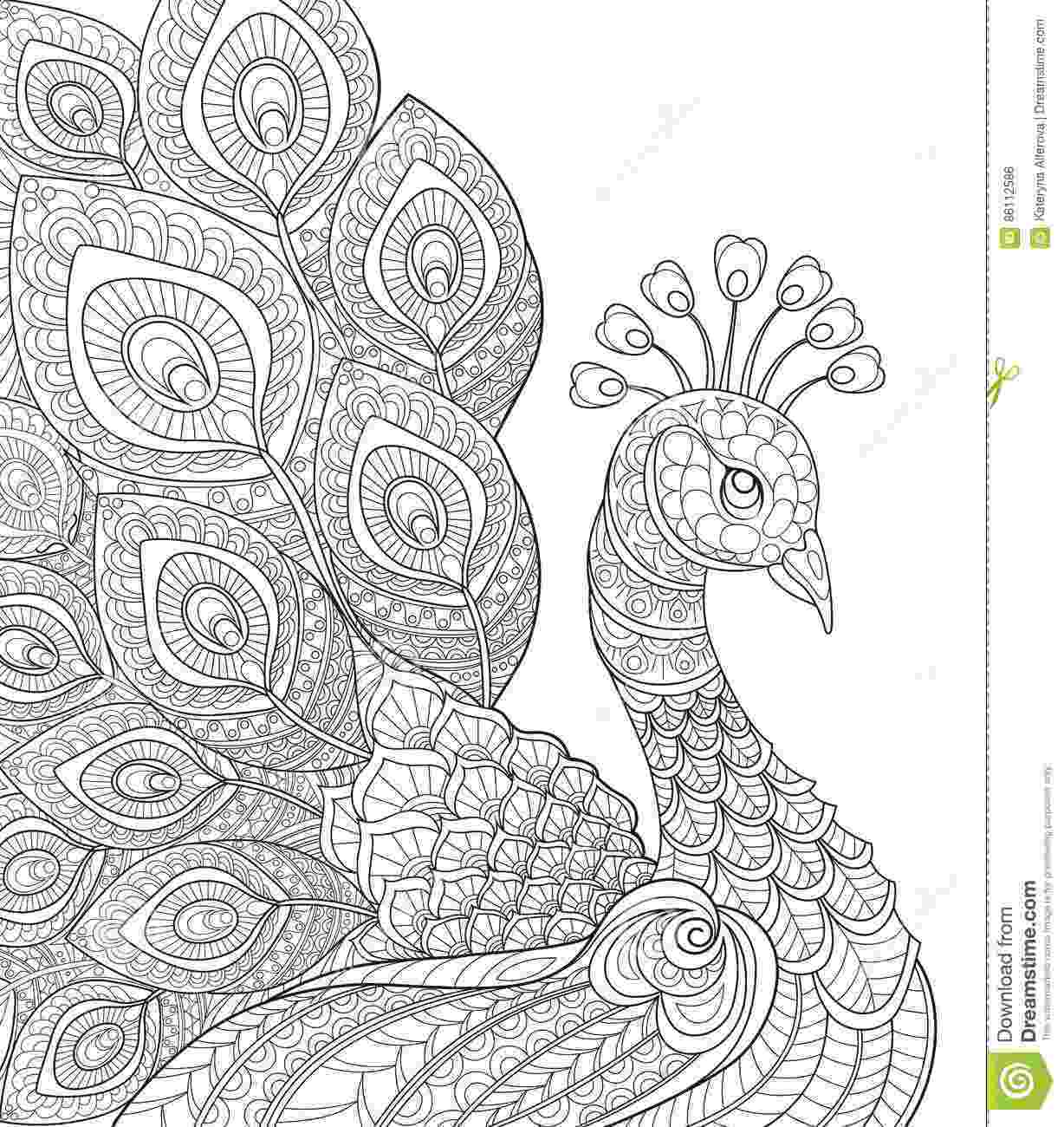 black and white coloring pages for adults insects coloring pages for adults coloring adult black for coloring white pages adults and