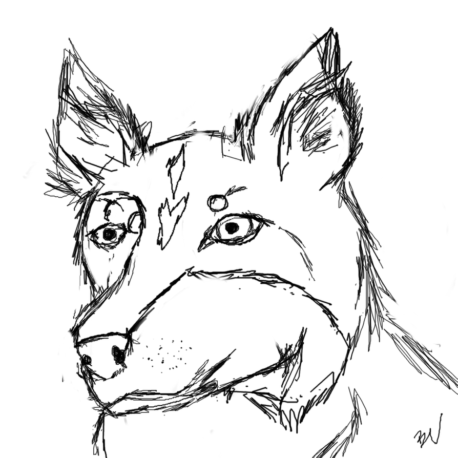 border collie coloring pages boarder collie face coloring pages surfnetkids border coloring collie pages
