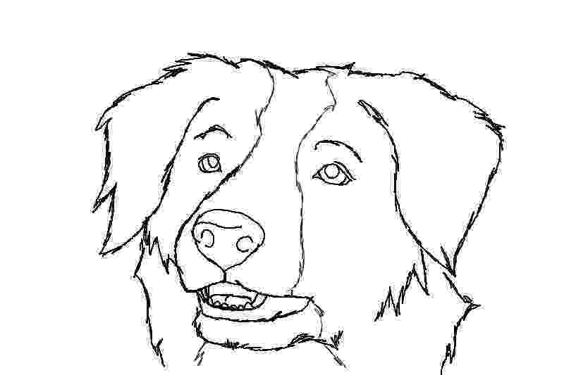 border collie coloring pages border collie by reike on deviantart pages border coloring collie