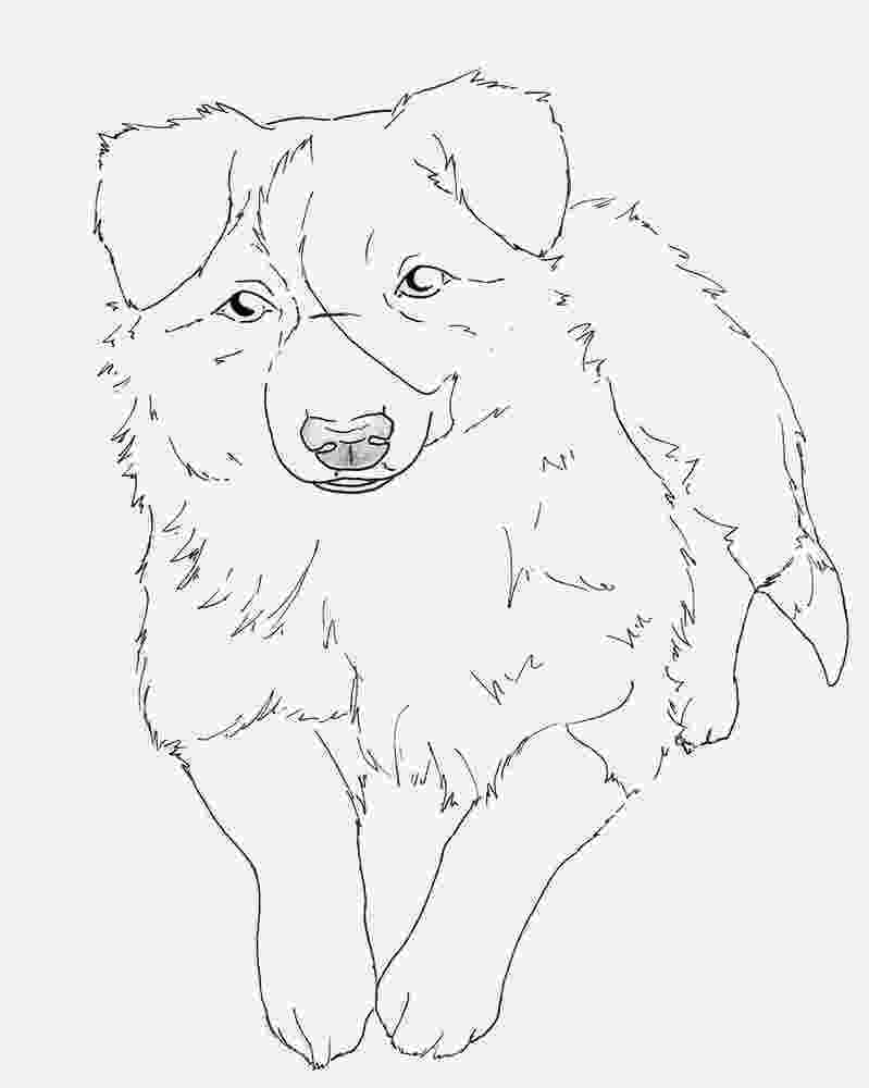 border collie coloring pages border collie coloring page dog art pinterest collie pages coloring border collie