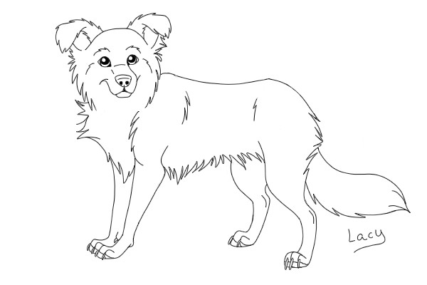 border collie coloring pages border collie coloring pages coloring pages coloring border collie pages