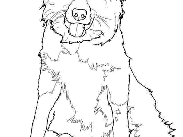 border collie coloring pages border collie pixel lineart by kheisa on deviantart coloring collie border pages