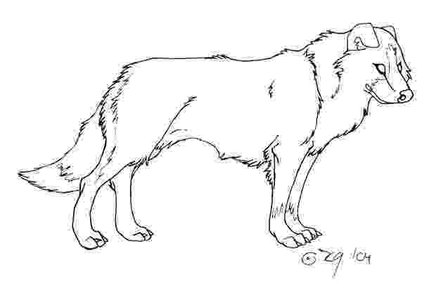 border collie coloring pages free border collie outline download free clip art free collie border pages coloring