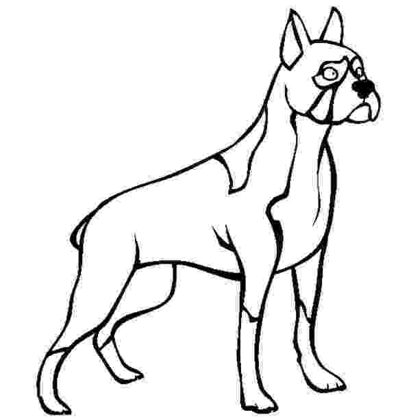 boxer puppy coloring pages boxer coloring pages boxer pages coloring puppy