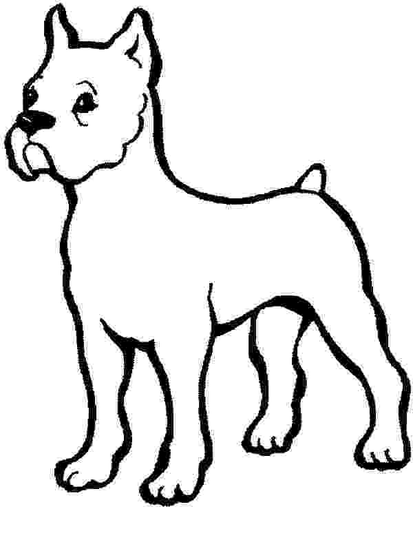 boxer puppy coloring pages boxer dog baby coloring pages boxer dog baby coloring coloring puppy boxer pages