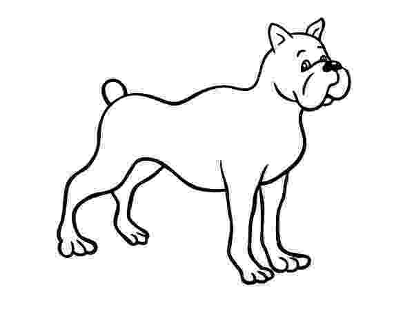 boxer puppy coloring pages boxer dog drawing at getdrawingscom free for personal puppy boxer coloring pages