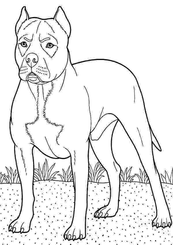 boxer puppy coloring pages boxer dog guarding at backyard coloring pages best place boxer pages coloring puppy