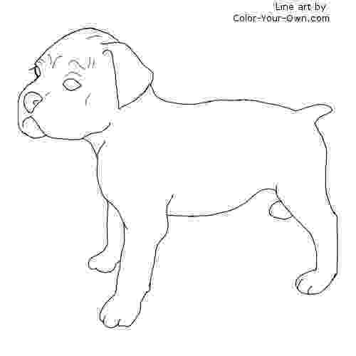 boxer puppy coloring pages boxer puppy coloring page puppy boxer coloring pages