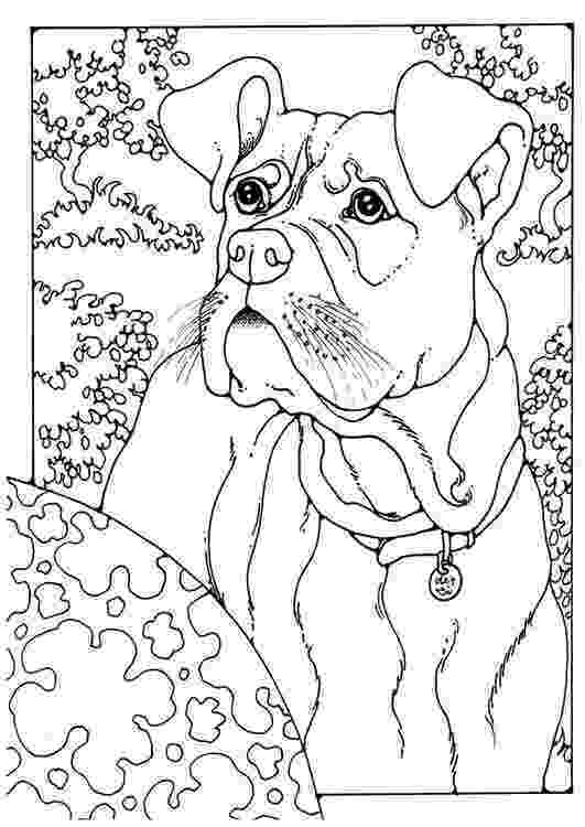 boxer puppy coloring pages coloring page boxer coloring picture boxer free puppy boxer pages coloring
