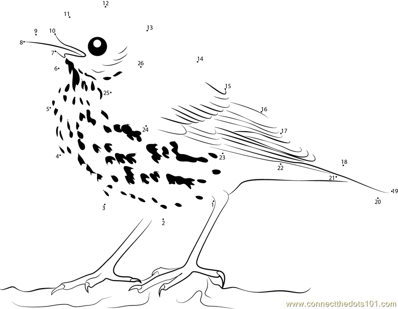 brown thrasher coloring page brown thrasher connect dots printable coloring pages coloring thrasher brown page