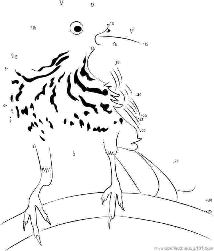 brown thrasher coloring page united states clip art by phillip martin georgia state brown thrasher page coloring