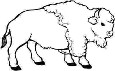 buffalo pictures to color coloring pages buffalo countries gt spain free color buffalo to pictures