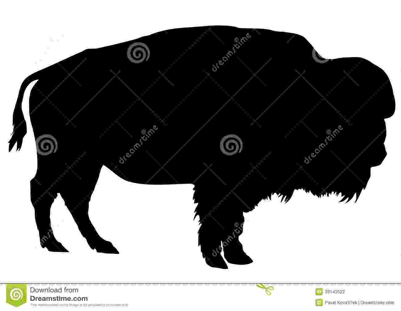 buffalo vector buffalo head stock images royalty free images vectors buffalo vector