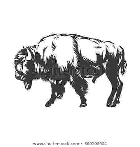 buffalo vector buffalo silhouette stock illustrations 1798 buffalo vector buffalo