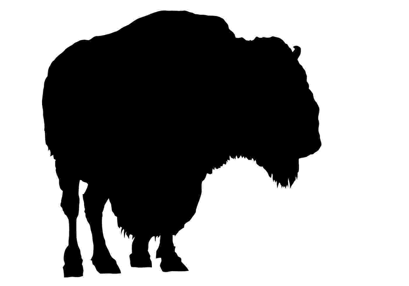 buffalo vector buffalo vectors photos and psd files free download buffalo vector
