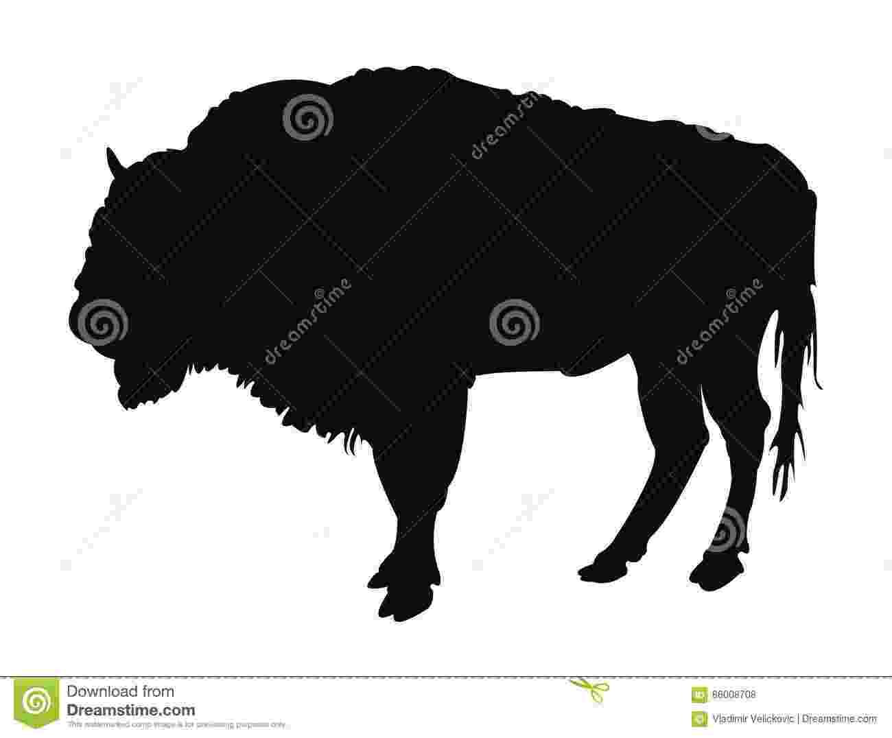 buffalo vector head of buffalo stock vector illustration of isolated vector buffalo