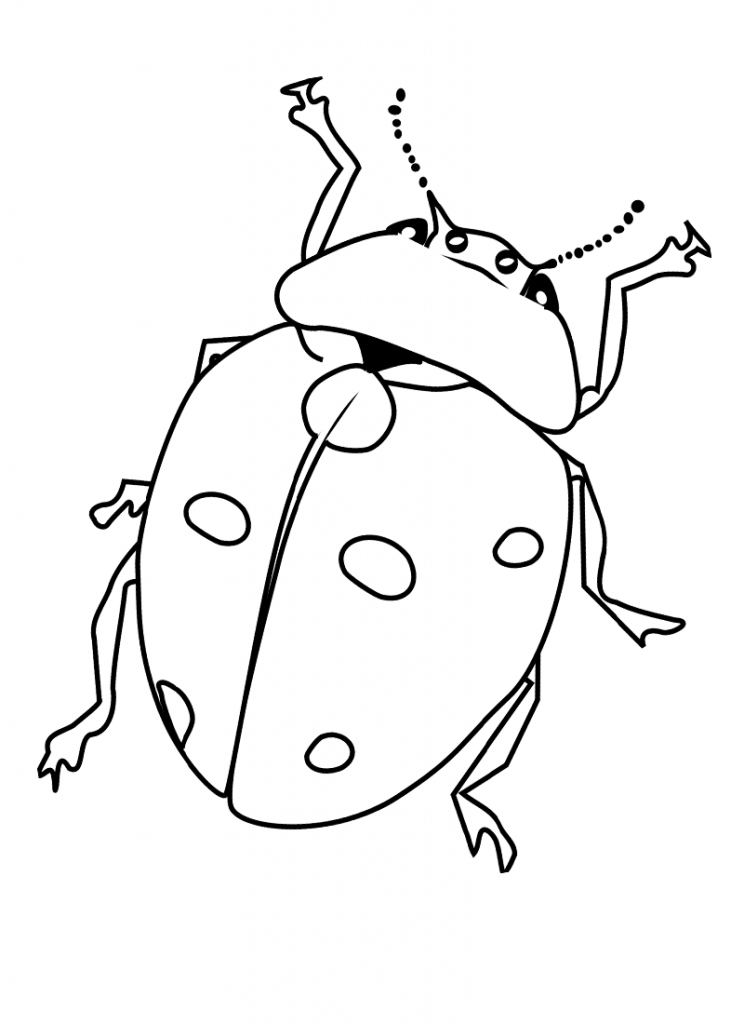 bug coloring page free printable bug coloring pages for kids coloring bug page