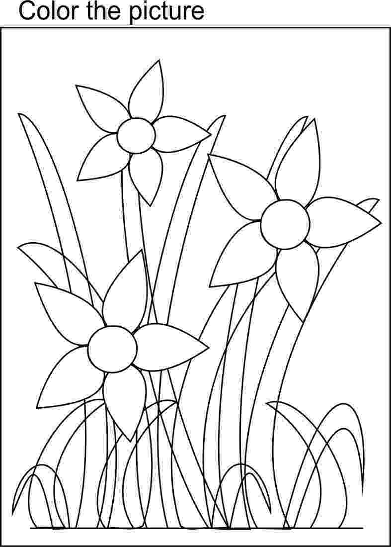 bunch of flowers colouring pages bunch of nasturtium flower coloring page download free bunch of flowers colouring pages