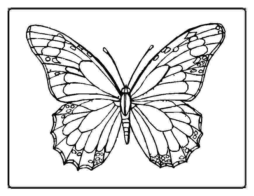 butterflies coloring pages butterfly coloring pages coloring butterflies pages