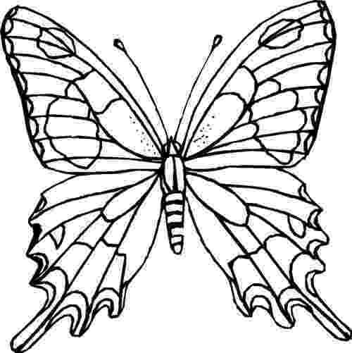butterflies coloring pages butterfly coloring pages for kids gtgt disney coloring pages pages coloring butterflies