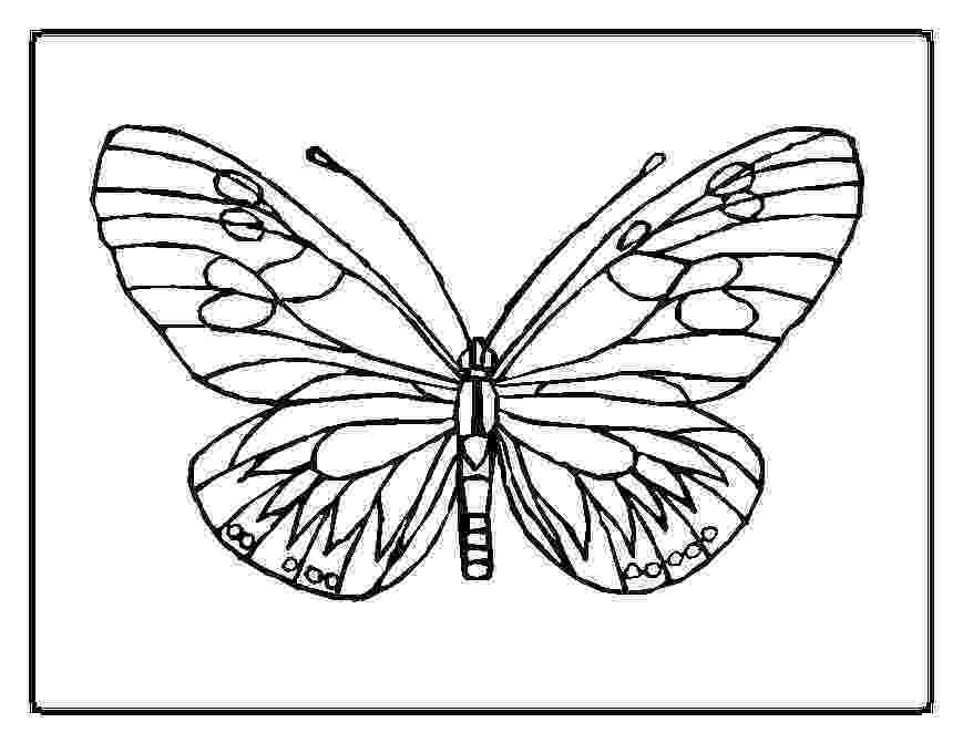 butterflies coloring pages free printable butterfly coloring pages for kids butterflies pages coloring