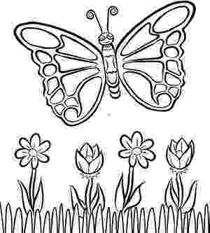 butterflies coloring pages free printable butterfly coloring pages for kids coloring pages butterflies